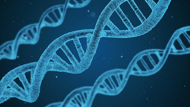 درباره تفكر ژنتيكي (قسمت دوم)